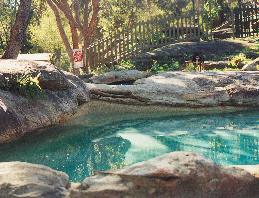 Kellyville natural pool traditional poolstraditional pools for Pool and spa show 2016